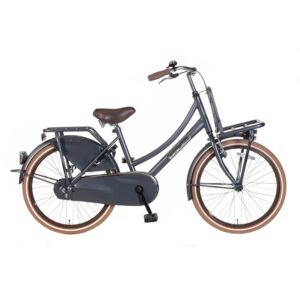 Popal Daily Dutch Select meisjesfiets 22 inch mat